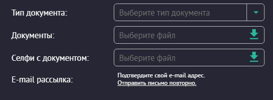 Форма верификации игрока в личном кабинете pin up